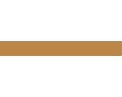 Belvicci Logo